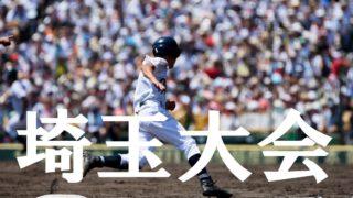 高校 野球 埼玉 2019